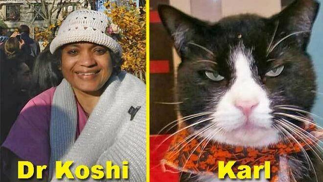 La doctora Shirley Koshi y el gato