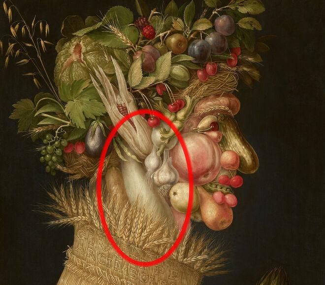 """""""Verano"""" 1563"""