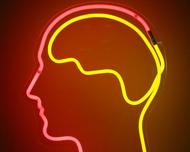 Los resultados demuestran la relación que existe entre la habilidad que tiene el cerebro para predecir palabras y la activación de las áreas cerebrales implicadas en la producción del lenguaje