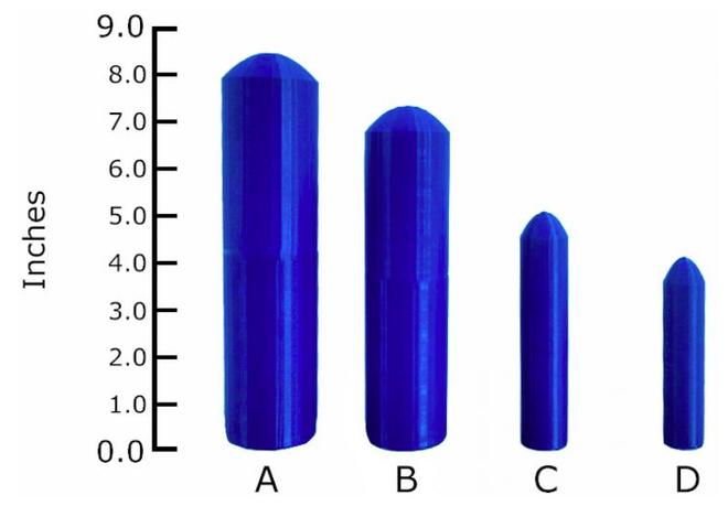 Imagen del estudio de los penes en 3D