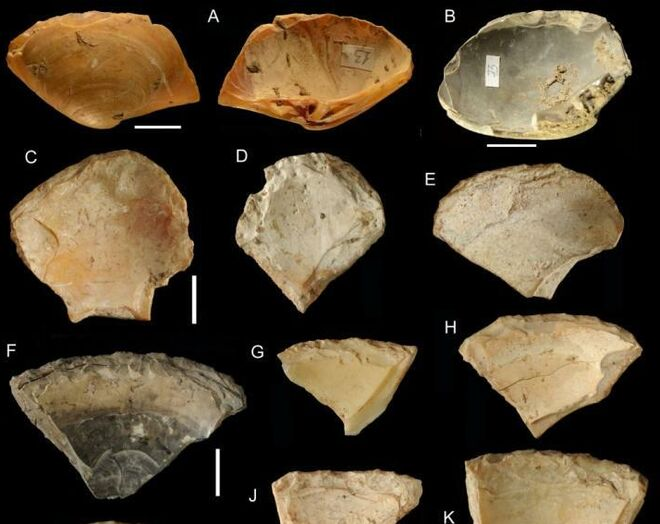 Algunas de las conchas analizadas en el estudio