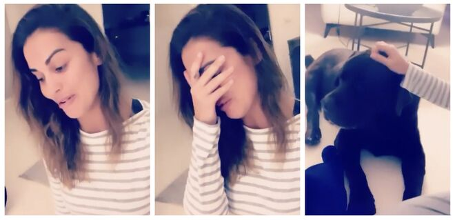 Lara Álvarez llora al despedirse de su perro
