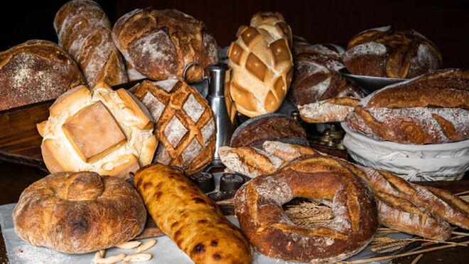 Distintos panes del Grupo Viena.