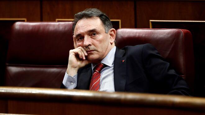 El diputado de Podemos, Enrique Santiago.
