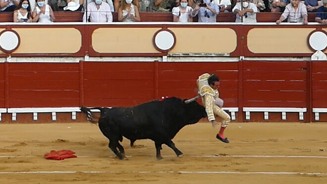 Enrique Ponce es cogido por un toro