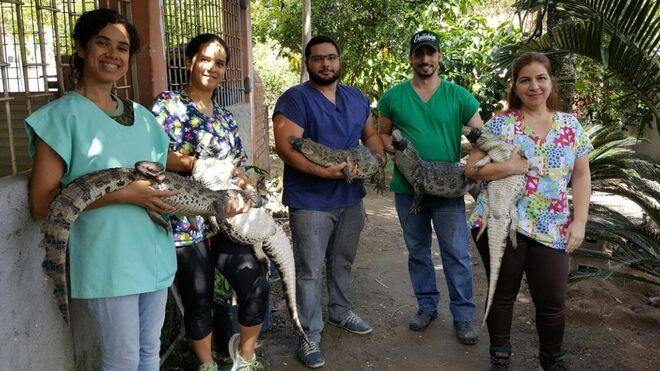 La doctora Pontes y su equipo con los caimanes