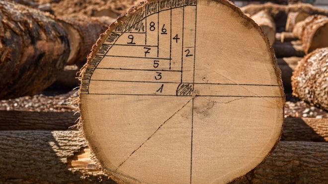 Detalle del proceso del corte de troncos, con los números de las duelas que se obtienen de cada sección.