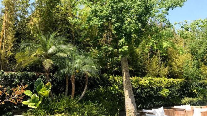 Jardines en el exterior del restaurante Breathe, en Marbella.