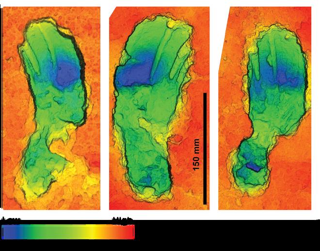 Modelado en 3D de las huellas analizadas, en el que se aprecia la diferencia entre los pasos con más o menos carga