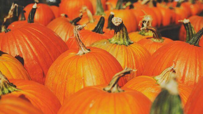 Octubre es el mes de Halloween y el de las calabazas.