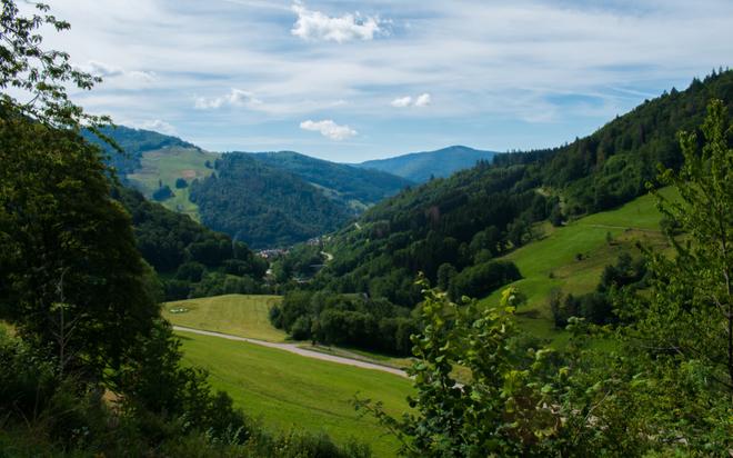 Selva Negra, Alemania.