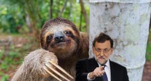 Montaje de Mariano Rajoy.