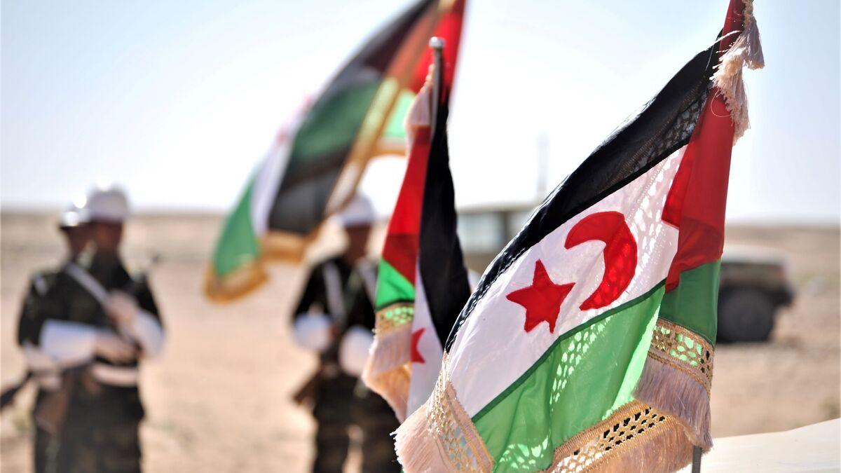 Banderas de la República Árabe Saharaui Democrática (RASD).