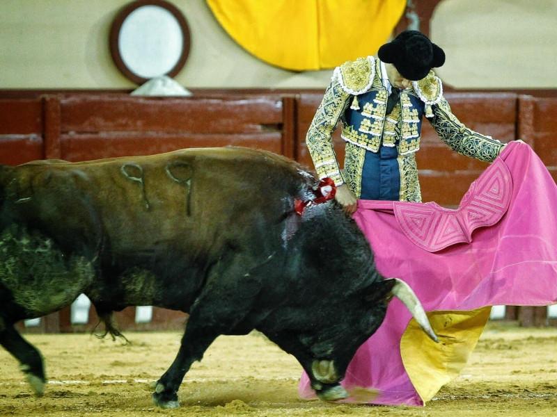 El Supremo establece que la faena de un torero no es propiedad intelectual