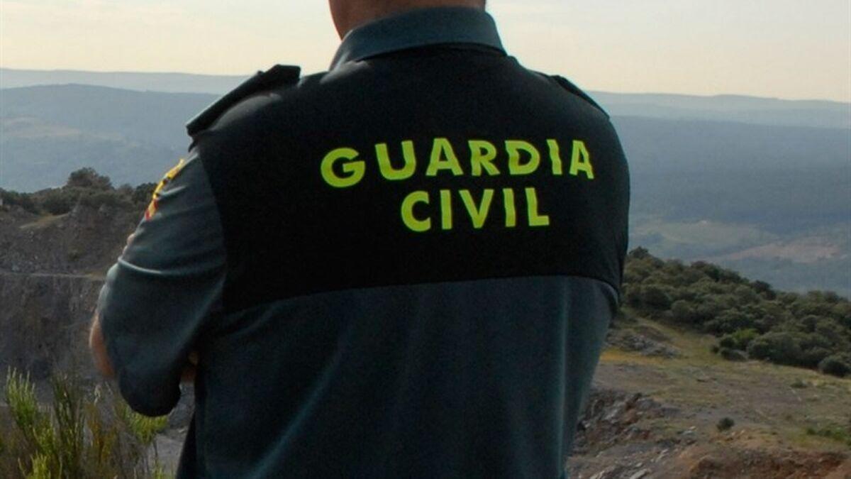 Detenido el dueño de una perrera clandestina en Parla (Madrid) con cien perros