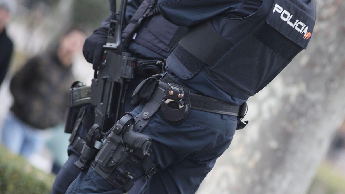 Detenidos 23 miembros de una red ligada a la mafia rusa que quería infiltrarse en instituciones y empresas españolas