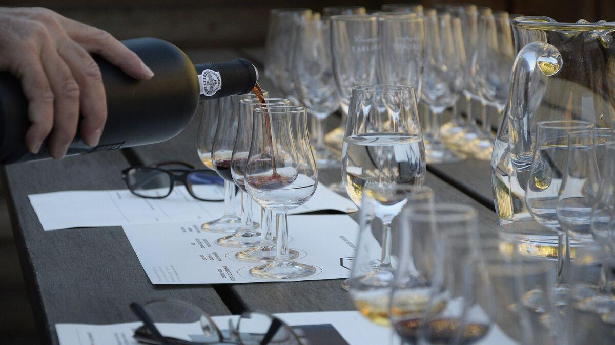 Juega, aprende y conoce todos los secretos del vino