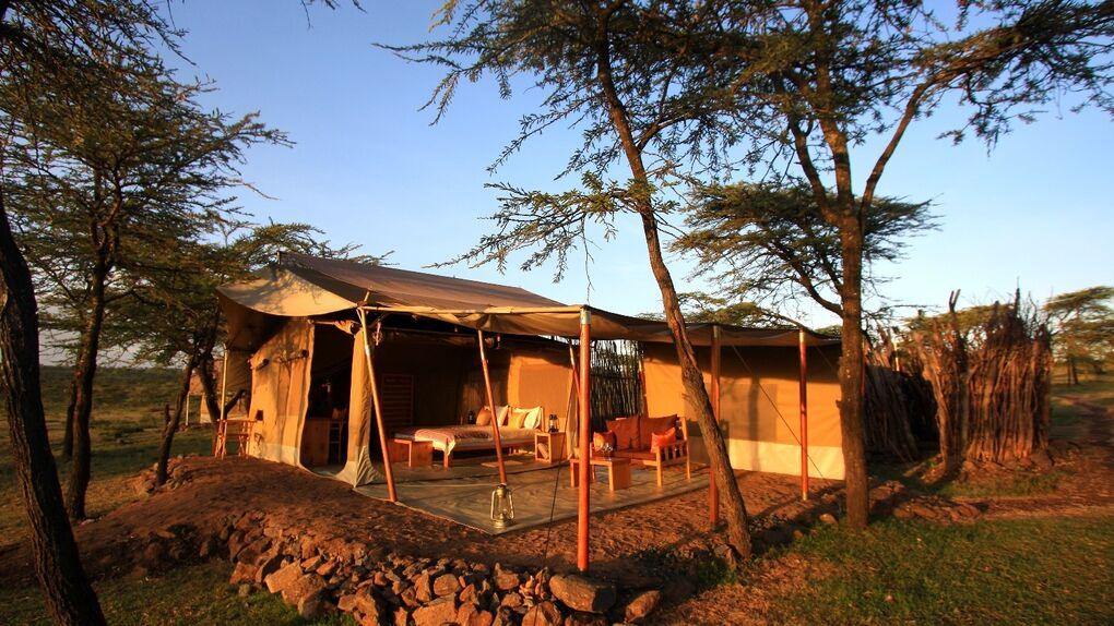 Kandili Camp: Maasai Mara a la madrileña