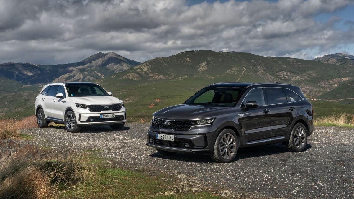 Kia Sorento diésel y Skoda Enyaq iV eléctrico: novedades en formato SUV
