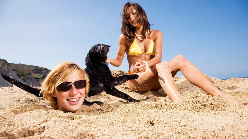 Playas y perros: los tiempos están cambiando