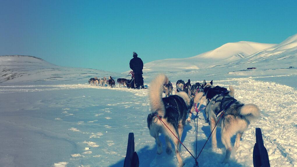 10 motivos para ir a Svalbard con Borge Ousland