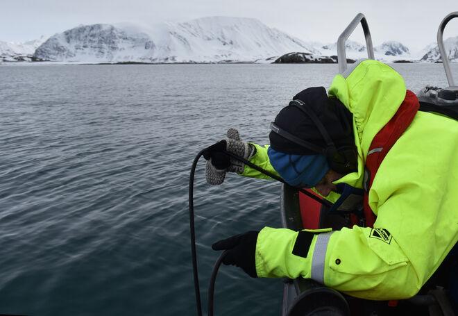 Toma de sonidos con el hidrófono en aguas del Ártico