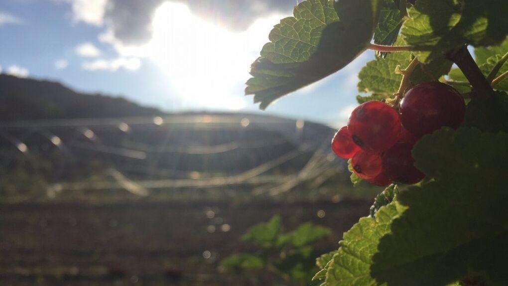 ¡Para amantes del ciclismo! El mejor fin de semana se esconde en la comarca de Sobrarbe (Huesca)