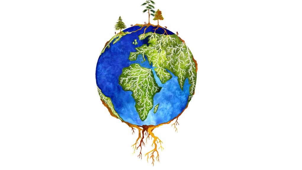 Una amenaza global en las raíces de los árboles