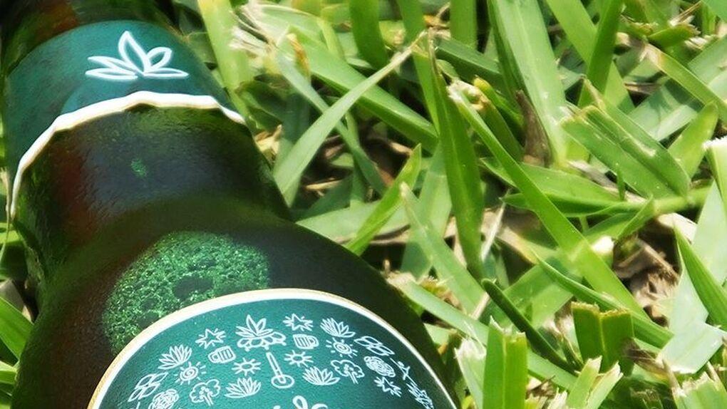 Probamos la primera cerveza del mundo hecha con ágave