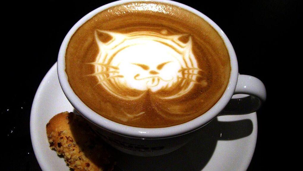 La Gatoteca: cafés con ronroneos en Lavapiés