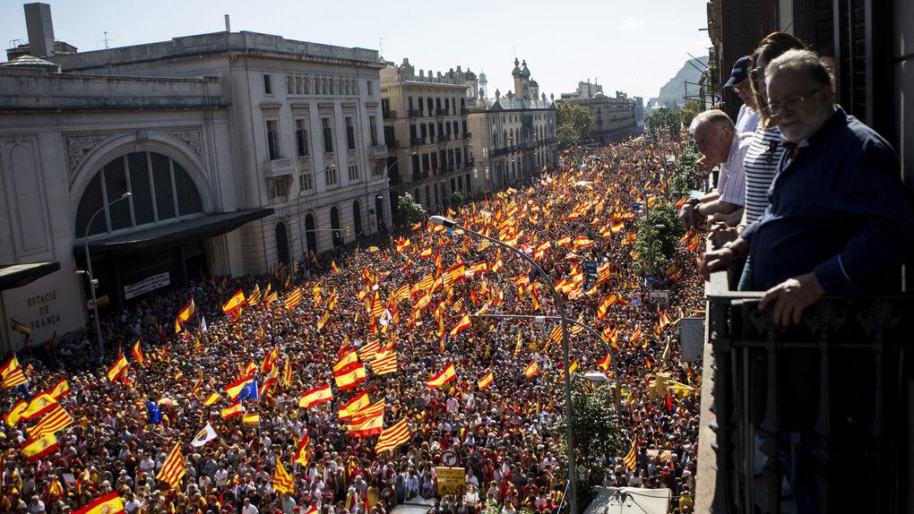 """""""No estáis solos"""": Vargas Llosa, Savater y otras decenas de firmas piden movilizarse el 14-F"""