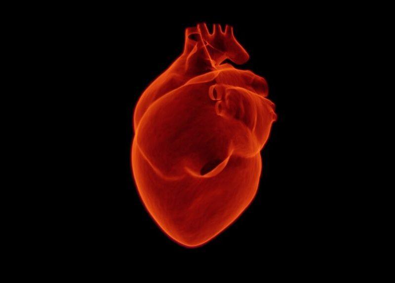 imagen de un corazón