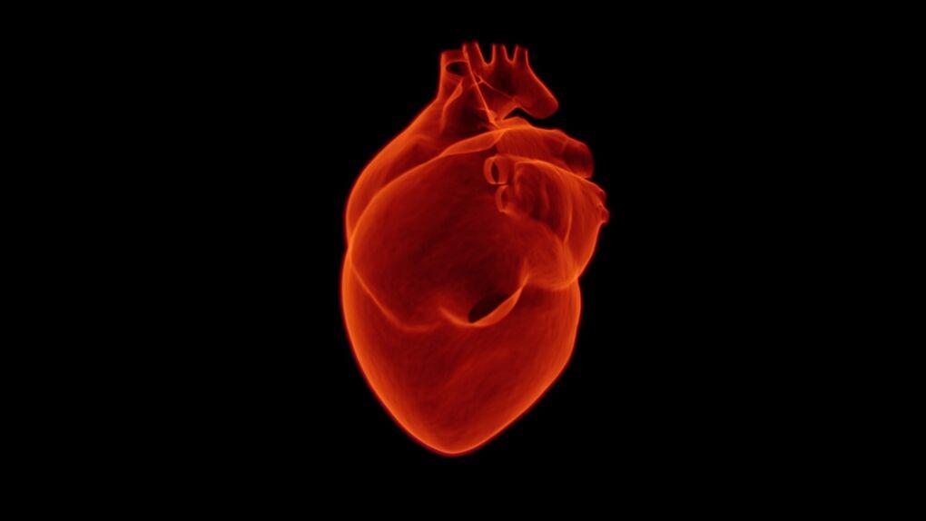 Ser mujer aumenta un 60% el riesgo de sufrir insuficiencia cardiaca grave tras un infarto