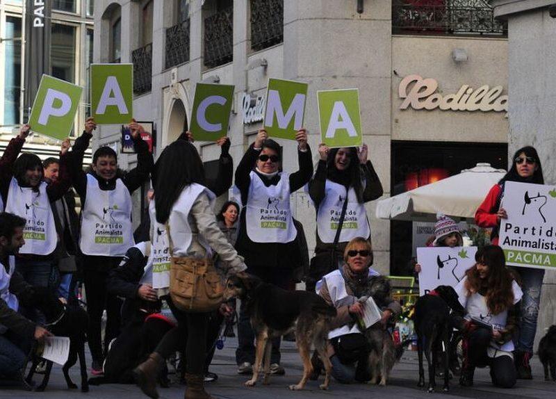 """Pacma acusa a Vox de """"quitarles"""" el cierre en Las Ventas para después no acudir"""