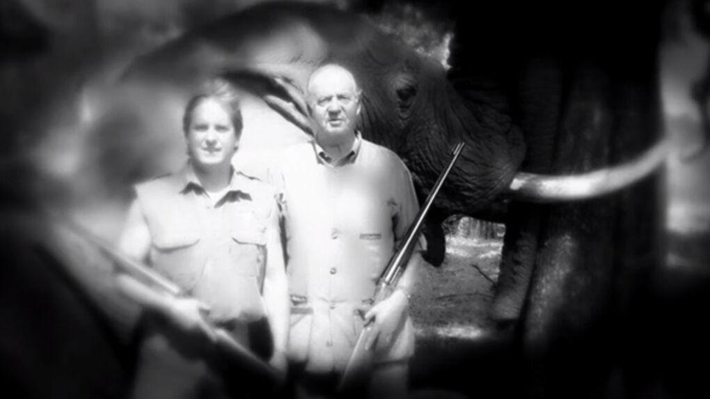 Prohibido el vídeo electoral del Partido Animalista por incluir la foto del Rey con el elefante muerto