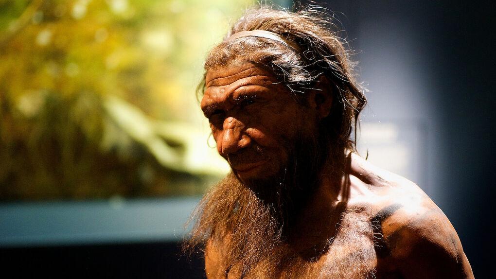 Descubren que los neandertales tenían una capacidad de habla similar a la de los sapiens