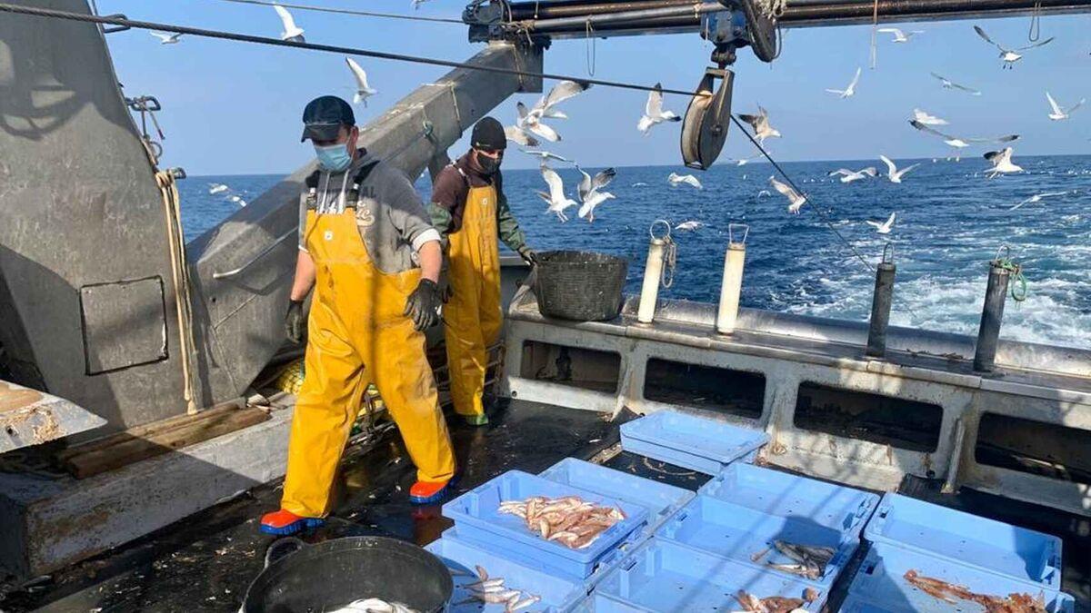 """El sector pesquero español alerta de que el acuerdo de Bruselas para el Brexit puede ser su """"muerte"""""""