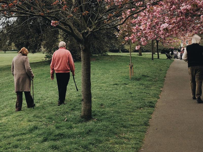Dos ancianos pasean por un parque.