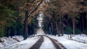 Hoy, nevadas en cotas bajas y descenso térmico en gran parte del país