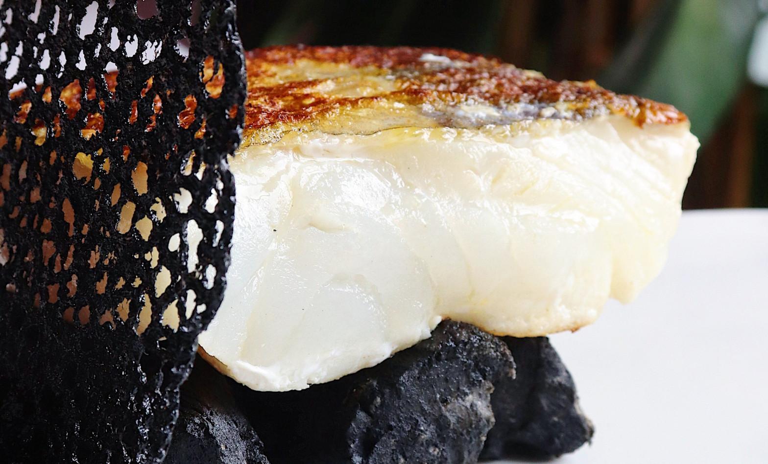Todo sobre el bacalao: características, sucedáneos y los mejores restaurantes