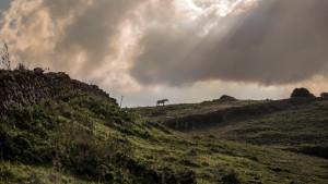 Cielo nuboso y precipitaciones en el extremo norte peninsular