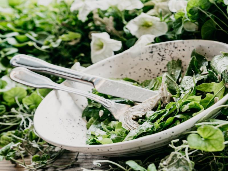 espinacas verdura hortaliza verde nutricion alimentacion
