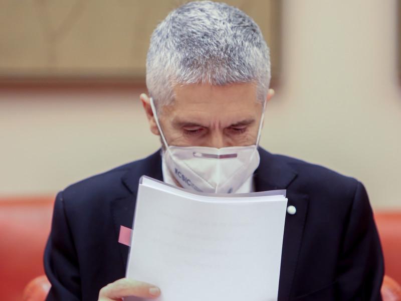 """Marlaska dice que no tiene """"ninguna voluntad"""" de dimitir tras ser anulada la destitución de Pérez de los Cobos"""