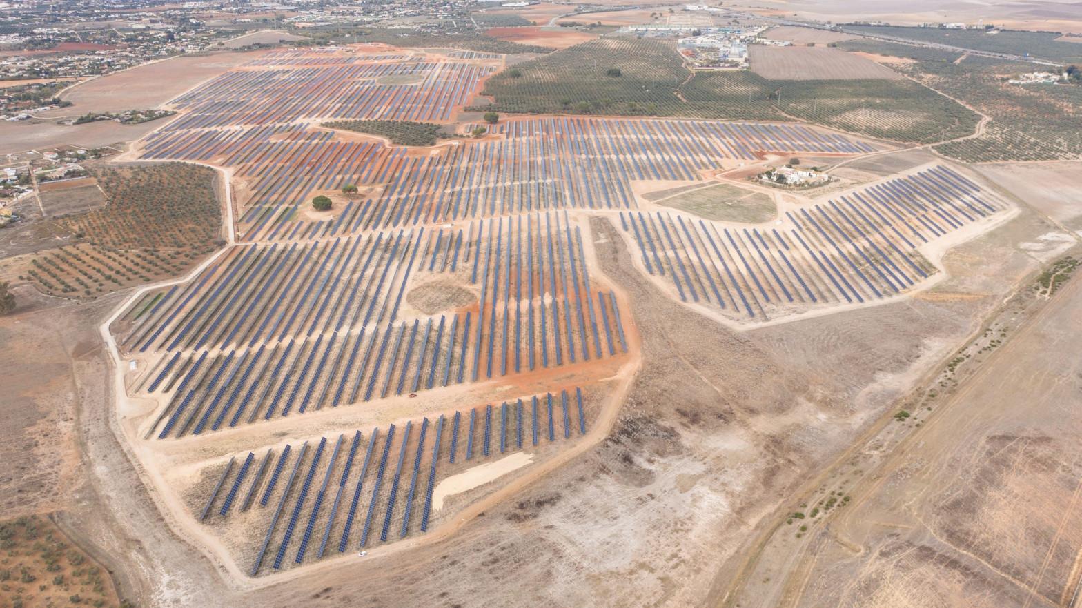 Planta fotovoltaica construida por OPDEnergy en Alcalá de Guadaíra (Sevilla).