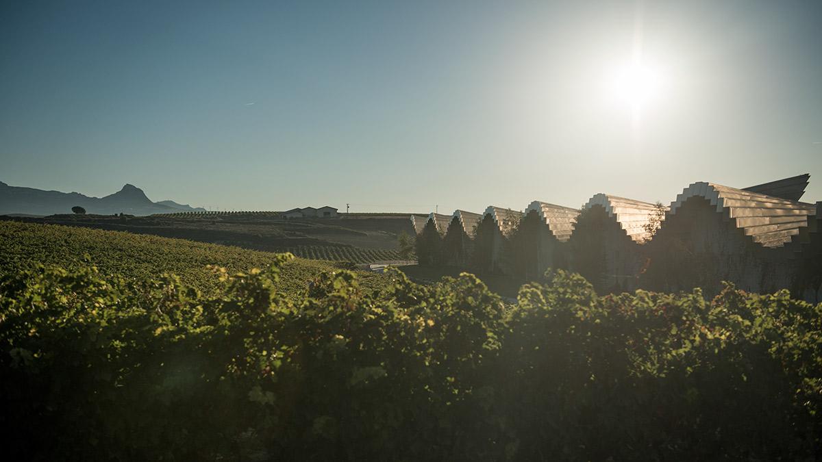 Ysios Finca El Nogal, la expresión más singular del terroir de Rioja Alavesa