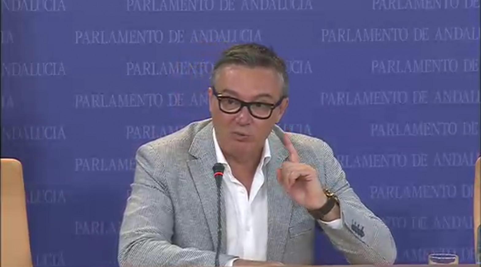 El portavoz de Vox en el Parlamento, Manuel Gavira.